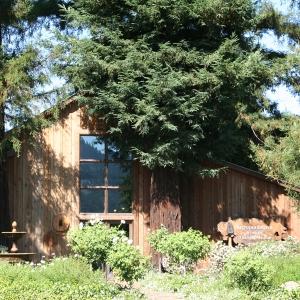 Sequoia Grove winery testing room