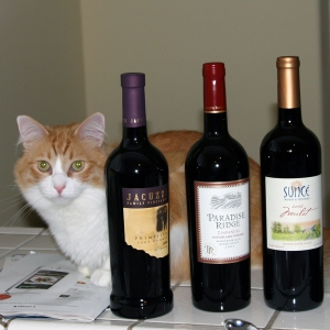 Rusty and bottles of wine