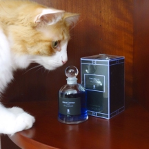 Rusty and Serge Lutens De Profundis