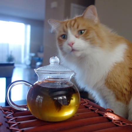 Rusty and Flowering Tea