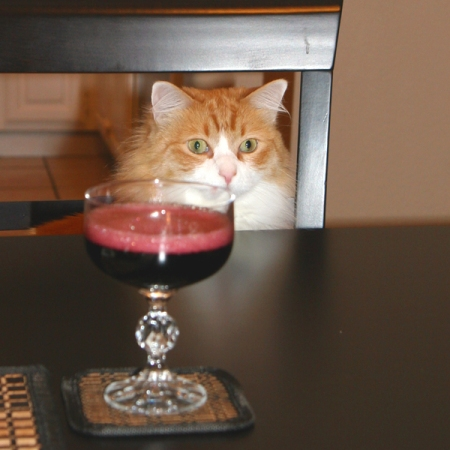 Rusty and Red Champagne