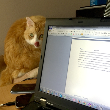 "Rusty ""helps"" me to work"