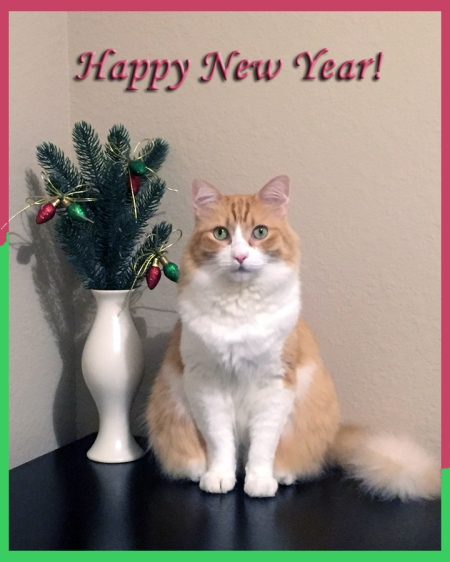 Rusty: Happy New Year 2018