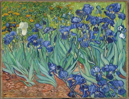 Vincent van Gogh Irises