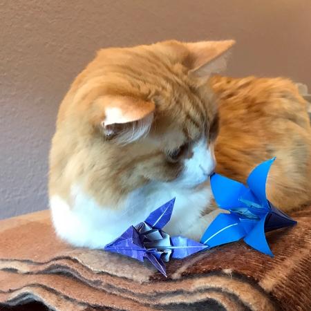 Rusty and Origami Iris