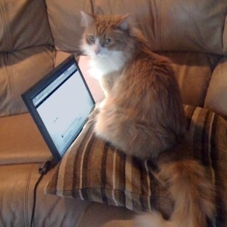 Rusty on Laptop