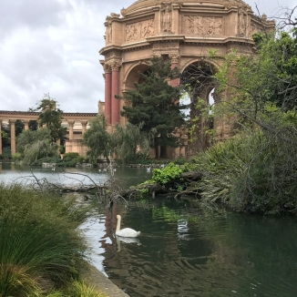 San Francisco The Palace of Fine Arts