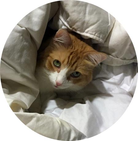 Rusty in a Circle