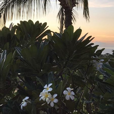 Tiare Big Island Hawaii
