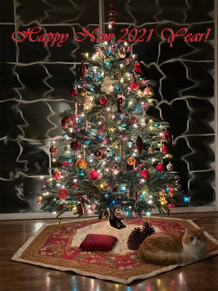 Rusty and New Year Tree 2021